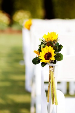 Sunflower-Aisle-Decor-250x375